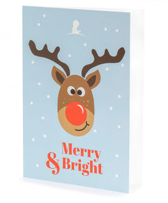 Reindeer Merry And Bright Holiday Card