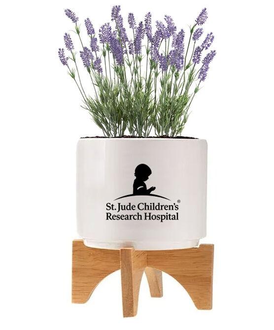 Ceramic Lavender Seed Planter