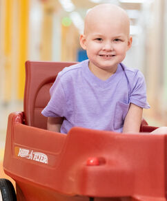 Donate a Patient Wagon