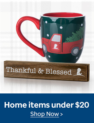 Shop home items $20 and under